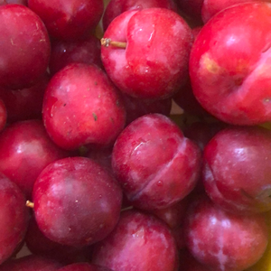 Ciruelas Amarillas & Rojas Organica (Organic Yellow & Red Cherries) 500gr