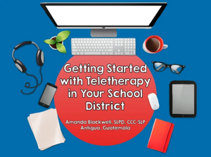 School District: 3-hour Interactive Teletherapy Training