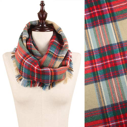 Multi Colored Plaid Frayed Edge Infinity Scarf