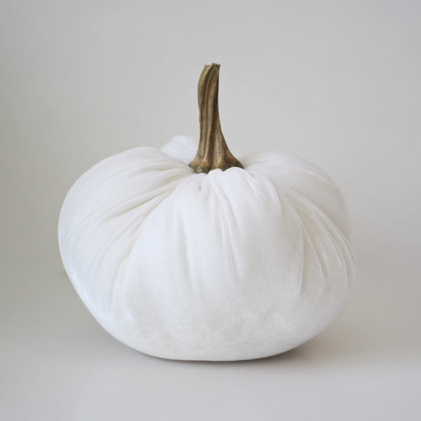 White Velvet Pumpkin with Real Stem