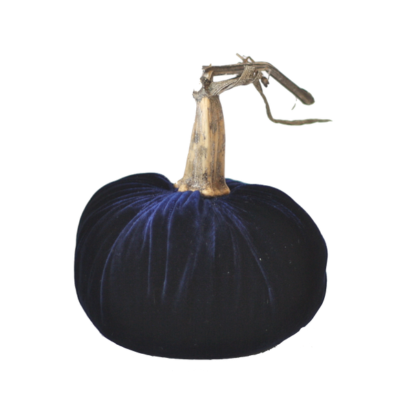 Midnight Blue Velvet Pumpkin with Real Stem