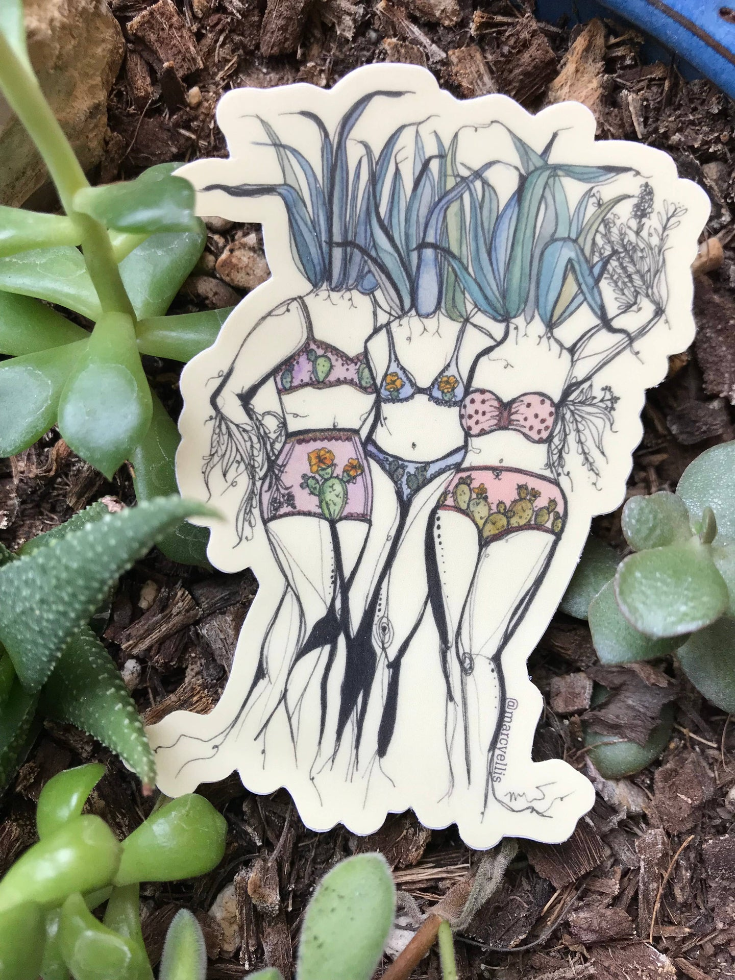 Agave sisters sticker