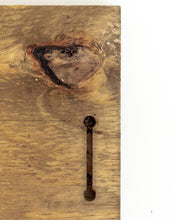 Load image into Gallery viewer, Saguaro on the mind wood painting