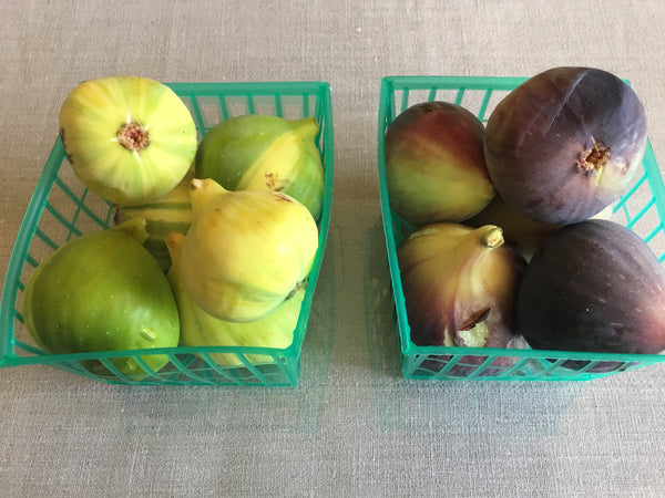 Figs basket