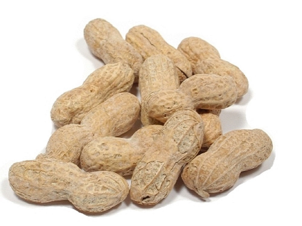 Peanuts (Roasted / Salted with Shell) - Nutty World
