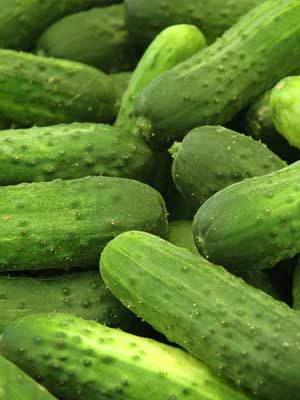 Pickling Cucumber'National'