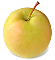 Gingergold Apples