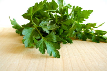 Parsley 'Giant of Italy'