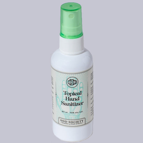Hand Sanitizer 96 ml Spray Bottle