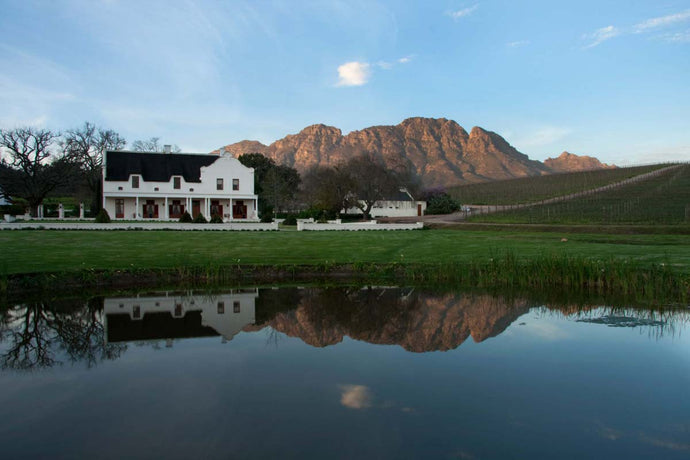 Falling in Love with Glenelly Estate