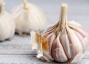 WILD PEACOCK Veg - Garlic Bulb (200g) - Together Store South Africa