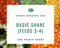 Basic Share One Month