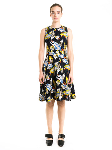 Calathea Skater Dress