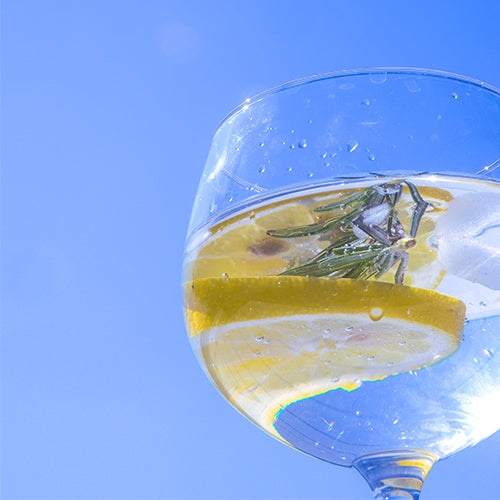 G&T - The perfect serve
