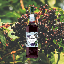 Load image into Gallery viewer, Giffard Syrup Blackcurrant