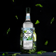 Load image into Gallery viewer, Giffard Syrup Mojito