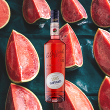 Load image into Gallery viewer, Giffard Liqueur Watermelon