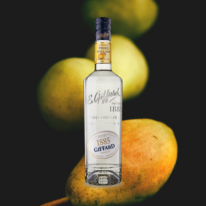 Giffard Liqueur William Pear