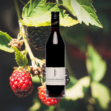 Load image into Gallery viewer, Giffard Liqueur Cassis Noir de Bourgogne