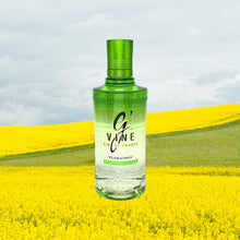 Load image into Gallery viewer, G'Vine Floraison Gin