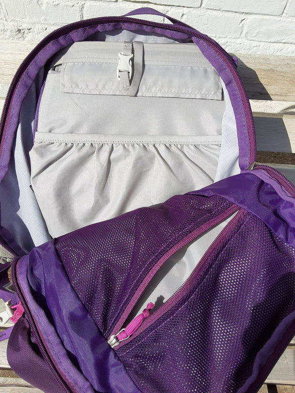Gregory Day Pack - Purple, 28 L