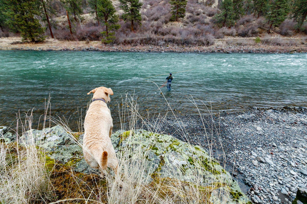 Excited on the Salmon River while Spey Fishing.
