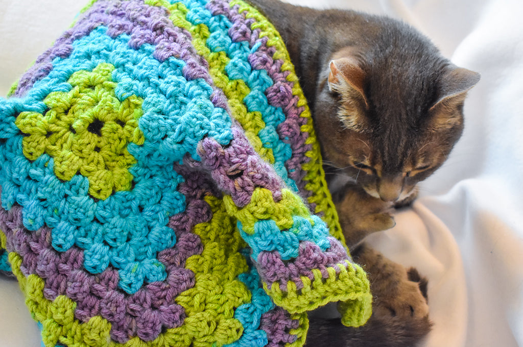 Gray tabby cat Olivia with a Critter Crafting Crochet Cat Mat