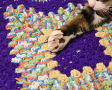 Load image into Gallery viewer, Purple Rainbow Cat Mat