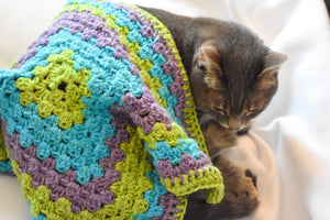 Lavender, Lime Green, & Bright Blue Gradient Cat Mat