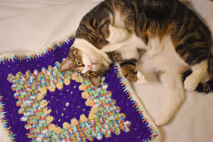 Purple Rainbow Cat Mat