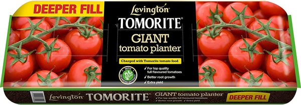 Levington Tomorite Giant Tomato Planter - 2 FOR £10