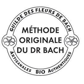FLEURS DE BACH - ROLL-ON ENERGIZING
