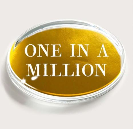 One In A Million  Crystal Oval Paperweight