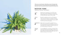 Load image into Gallery viewer, Little Book of House Plants and Other Greenery