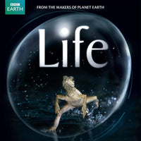 Life (David Attenborough) Blu-ray Used