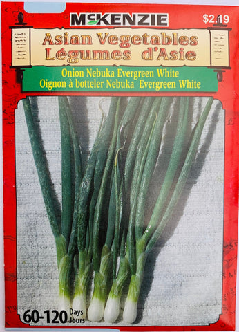 McKenzie Seeds Asian - Onion Nebuka Evergreen White