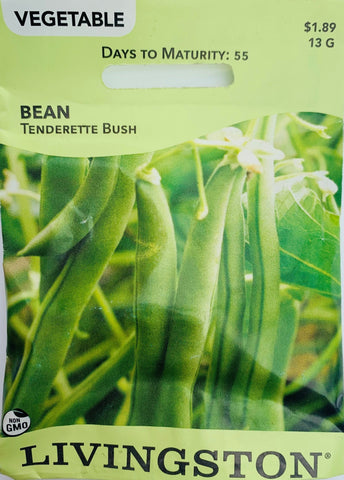 Livingston Seeds Bean - Tenderette Bush