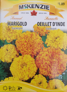 McKenzie Seeds Marigold Crackerjack