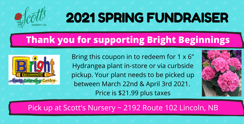 Bright Beginnings Fundraiser Coupon - Hydrangea