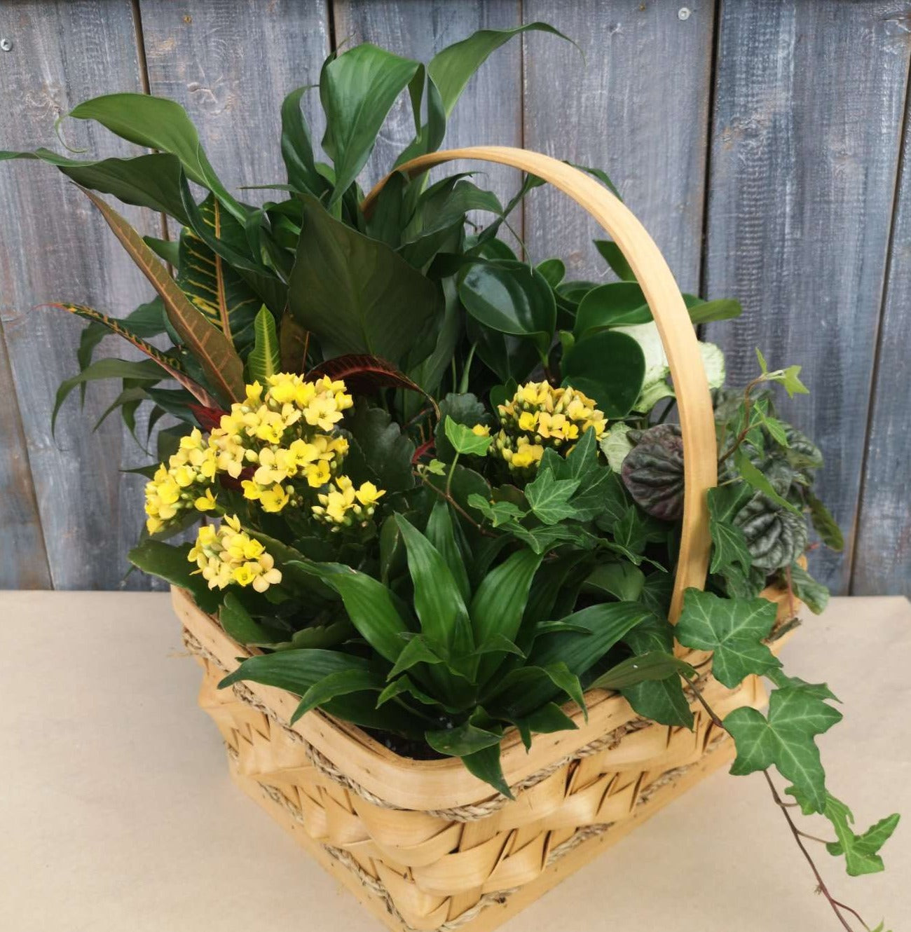 Basket Tropical Garden 12""