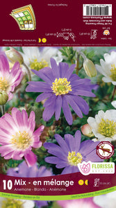 Bulbs Anemone Blanda Mix 10/pkg