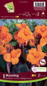 Bulbs Canna Bronze Wyoming 1/pkg