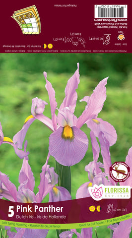 Bulbs Iris Pink Panther 10/pkg