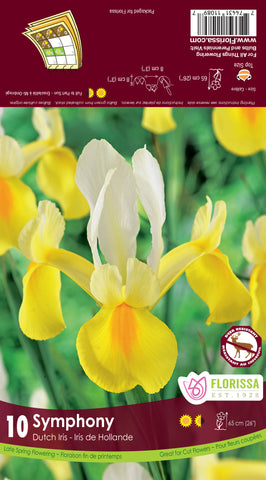 Bulbs Iris Dutch Symphony 10/pkg