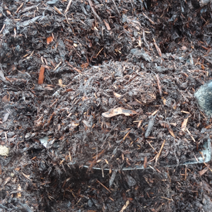 Natural Mulch Fir & Spruce Mix BULK *Pick-up only.