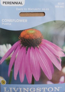 Livingston Seeds - Coneflower - Purple