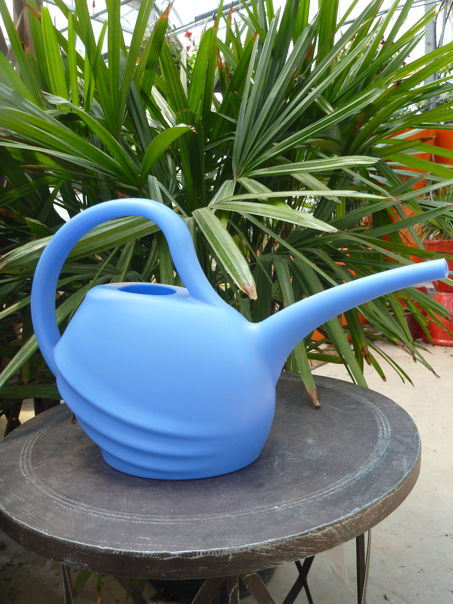 Watering Can 2L - Blue