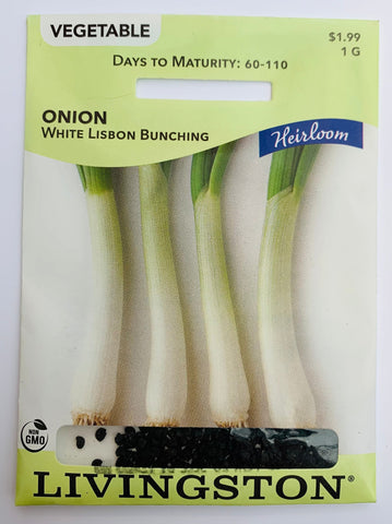 Livingston Seeds Onion - White Lisbon Bunch