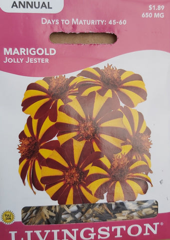 Livingston Seeds Marigold Jolly Jester