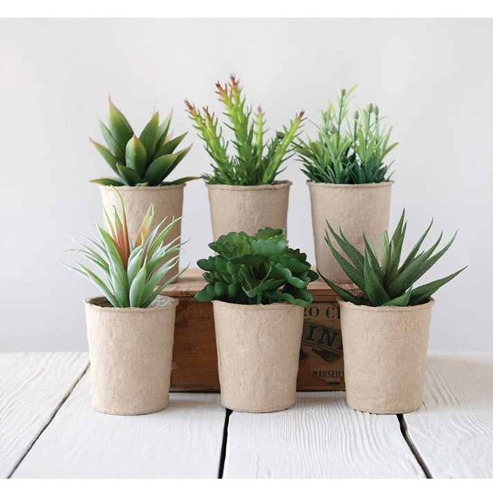 Assorted Faux Succulents in Pots